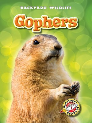 cover image of Gophers