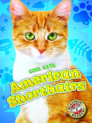 cover image of American Shorthairs