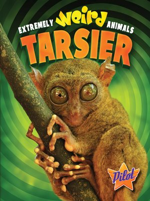 cover image of Tarsier