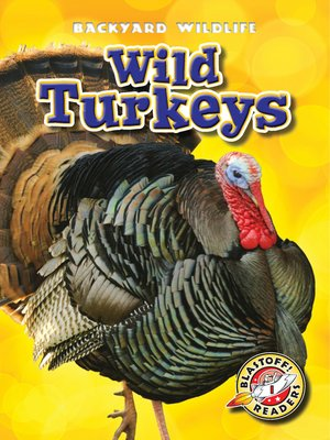 cover image of Wild Turkeys