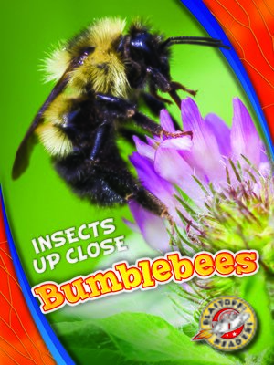 cover image of Bumblebees