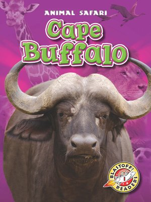 cover image of Cape Buffalo