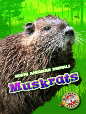 cover image of Muskrats