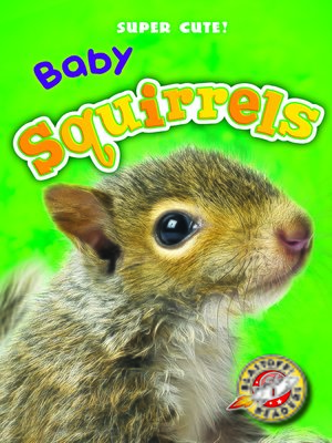 cover image of Baby Squirrels