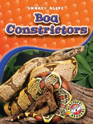 cover image of Boa Constrictors