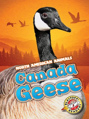 cover image of Canada Geese