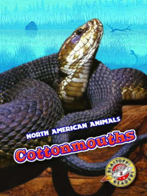 cover image of Cottonmouths