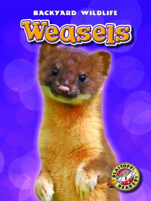 cover image of Weasels