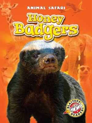 cover image of Honey Badgers