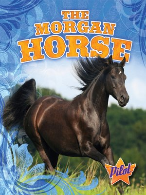 cover image of The Morgan Horse