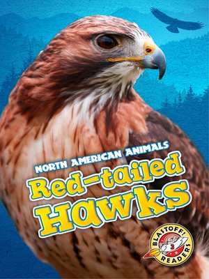 cover image of Red-tailed Hawks