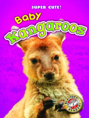 cover image of Baby Kangaroos