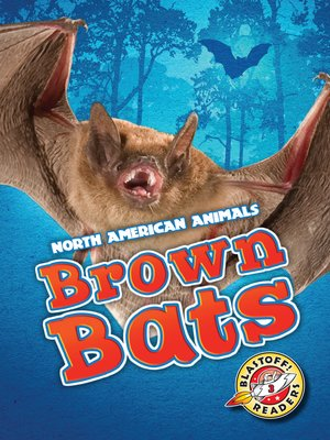 cover image of Brown Bats