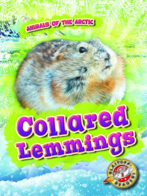 cover image of Collared Lemmings
