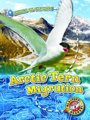 cover image of Arctic Tern Migration