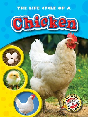 cover image of The Life Cycle of a Chicken