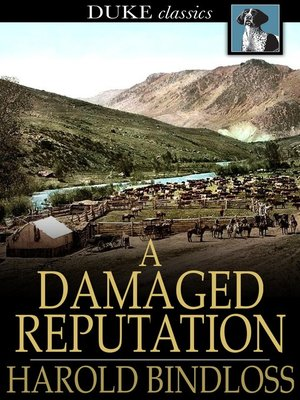 cover image of A Damaged Reputation