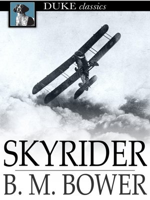 cover image of Skyrider
