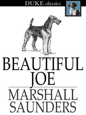 cover image of Beautiful Joe