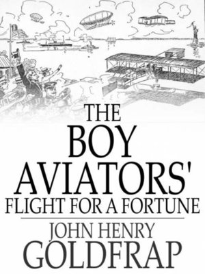 cover image of The Boy Aviators' Flight for a Fortune