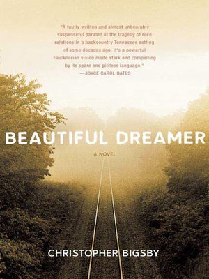cover image of Beautiful Dreamer