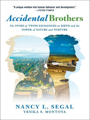 cover image of Accidental Brothers