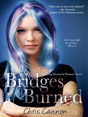 cover image of Bridges Burned