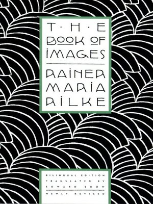 cover image of The Book of Images