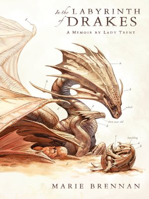 cover image of In the Labyrinth of Drakes