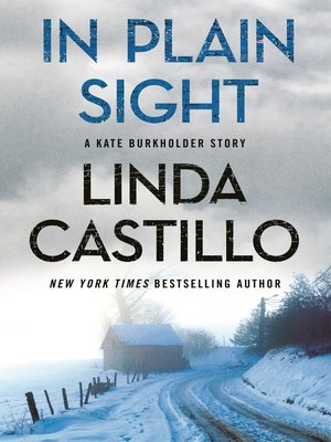 cover image of In Plain Sight