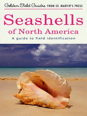 cover image of Seashells of North America