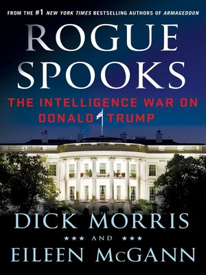 cover image of Rogue Spooks