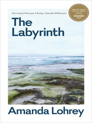 cover image of The Labyrinth