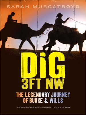cover image of Dig 3ft NW