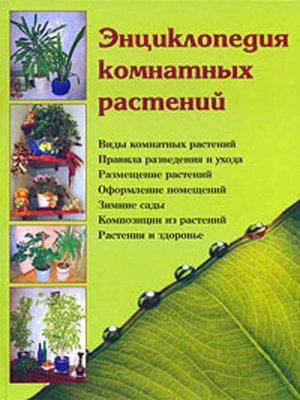 read пироги 2001