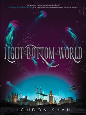 cover image of The Light at the Bottom of the World