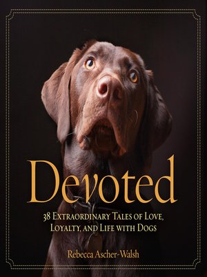 cover image of Devoted