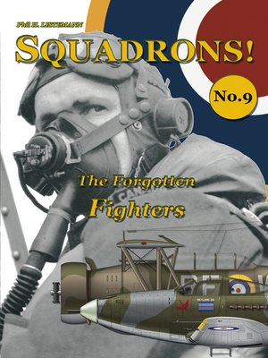cover image of The Forgotten Fighters
