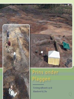 cover image of Prins onder Plaggen