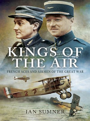 cover image of Kings of the Air