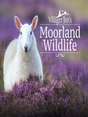 cover image of Villager Jim's Moorland Wildlife