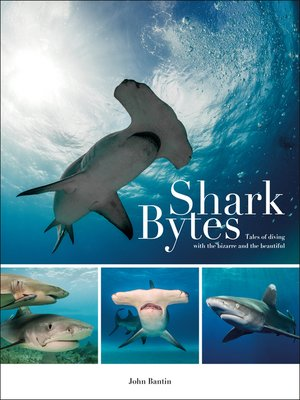 cover image of Shark Bytes