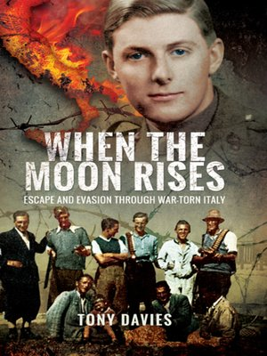 cover image of When the Moon Rises