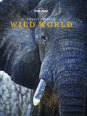 cover image of Lonely Planet's Wild World
