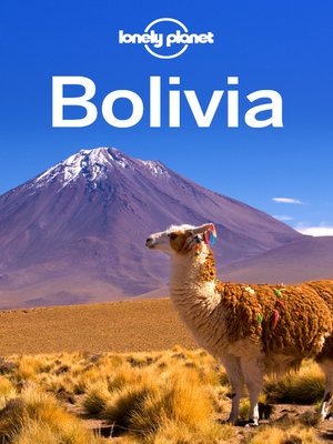 cover image of Bolivia Travel Guide