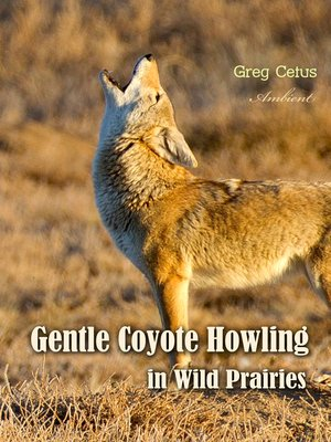 cover image of Gentle Coyote Howling in Wild Prairies