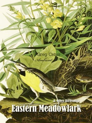 cover image of Eastern Meadowlark and Other Bird Songs