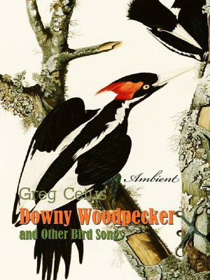 cover image of Downy Woodpecker and Other Bird Songs