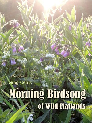 cover image of Morning Birdsong of Wild Flatlands