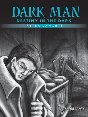 cover image of Destiny in the Dark (Blue Series)